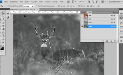 Photoshop-Tutorials: Inspirationen, Tipps und Tricks